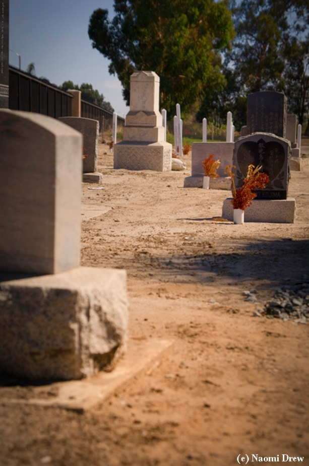 Headstones and Memorial Posts, Japanese Cemetery, Oxnard, CA