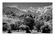 A View from the Owens Valley, BW