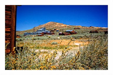 High Noon in the High Desert