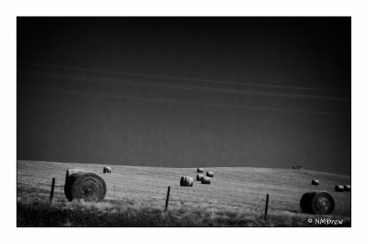 Bales & Lines (1 of 1)